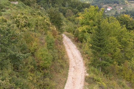 Dirt road in the mountains. Road in the mountain forest
