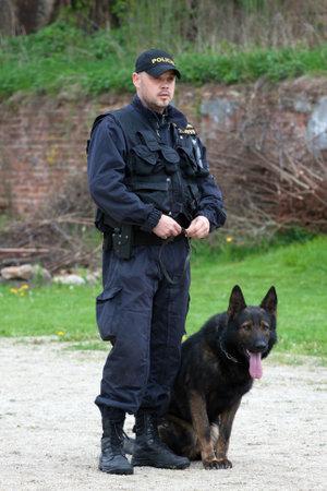 훈련 세션 동안 다리로 독일 셰퍼드와 경찰관