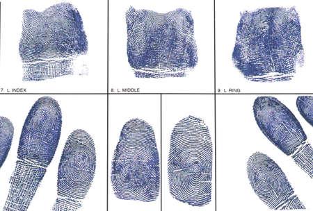 fingerprints: Fingerprint card with fingerprints Stock Photo