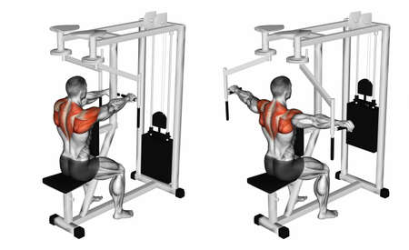 deviation: Deviation hands on simulator for rear deltoids. Exercising for bodybuilding. Target muscles are marked in red. Initial and final steps. 3D illustration