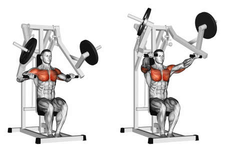 marked: Press hammer strength gym simulator. Exercising for bodybuilding Target muscles are marked in red. 3D illustration