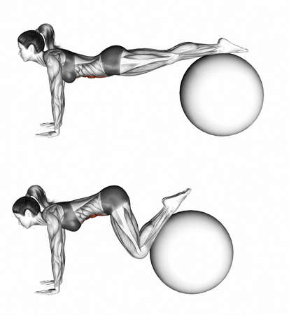girdle: Ball pull in. Exercising for Fitness. Target muscles are marked in red. Initial and final steps. 3D illustration