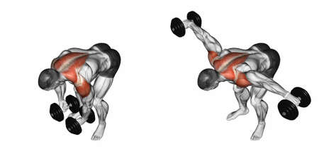 deltoid: Lifting dumbbell in hand to lean forward. Exercising for bodybuilding. Target muscles are marked in red. Initial and final steps. 3D illustration