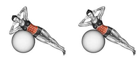 フィット ボールに体を曲げ。フィットネスのための運動。ターゲットの筋肉は赤でマークされます。最初と最後の手順を実行します。3 D イラストレ