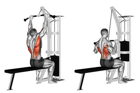 trapezius: End of the upper block in front of him. Exercising for bodybuilding Target muscles are marked in red. 3D illustration Stock Photo
