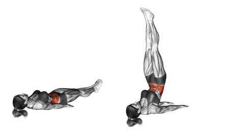 marked: Bottoms Up. Exercising for Fitness. Target muscles are marked in red. Initial and final steps. 3D illustration