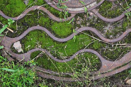 Rust metal hatchway with green moss. Urban city street art.