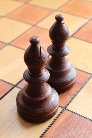 Two black elephants figures stands on a chessboard. Chess figures background. Wood game chessboard.