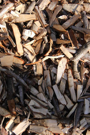 Birch chips piled together. Lot of wood peaces filling background.