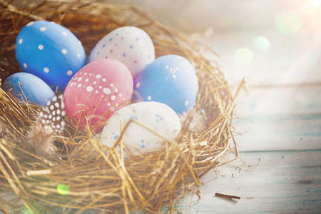 Beautiful Blue, Red and White Eggs in a White Polka-Dot is in a Grass Nest with Feathers in Speckles on a Wooden Background in the Sun Lights