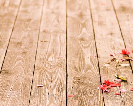 Autumn s fallen flowers on the wooden plank photo