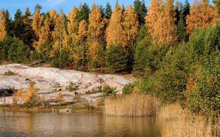 landsape: Forest pond landsape with beautiful autumn colors