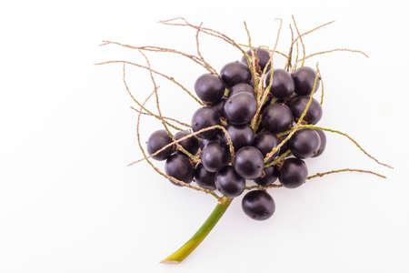 흰색 배경에 acai 과일 _ (Euterpe Oleracea) 스톡 콘텐츠