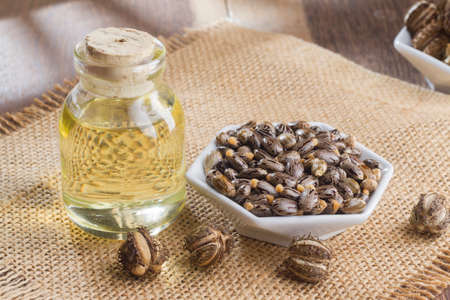 seeds and castor oil on the wooden table - Ricinus communis 版權商用圖片 - 110274910