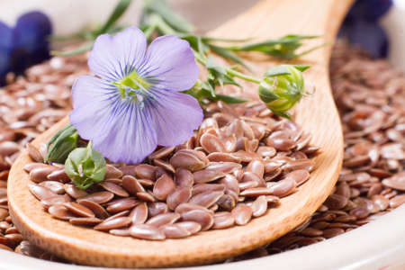 flax seed grains on the table, Linum usitatissimum Stock Photo