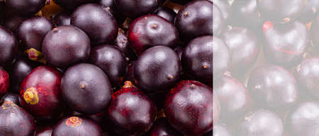Acai fruit, fruit of Amazonian origin are attributed many medicinal properties