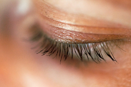 Beautiful macro shot of female eye with extreme long eyelashes and black liner makeup. Perfect shape make-up and long lashes. Cosmetics and make-up. Closeup fashion eyes visage,eyebrows beautiful
