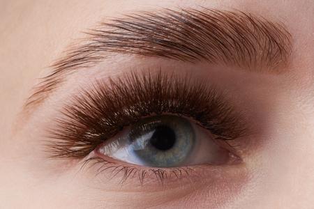 Piękna fotografia makro kobiecego oka z ekstremalnym makijażem długich rzęs. Idealne długie rzęsy. bez kosmetyków. Wizaż oczu z bliska, piękna brew laminowana Zdjęcie Seryjne