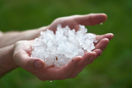 large pieces of ice hail in the palm of your hand. man holding a handful of large hailstones. consequences of natural anomalies. Stock Photo