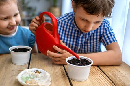 Cute boy and girl are sitting at table and engaged in sowing seeds for cultivation. Children sow seeds in pots with earth and water them. concept of growing your own vegetables. Natural gardening. Stock fotó