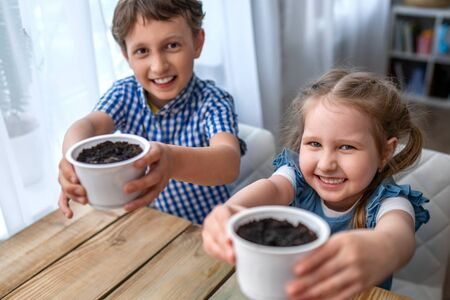 Cute boy and girl sitting at table and engaged in sowing seeds for cultivation. Children sow seeds in ground and cheerfully hold out pots. concept of growing your own vegetables. Natural gardening. Stock fotó