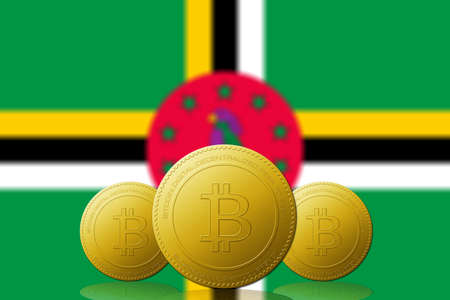 Three Bitcoins cryptocurrency with Dominica flag on background. 版權商用圖片