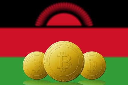 Three Bitcoins cryptocurrency with Malawi flag on background. 版權商用圖片