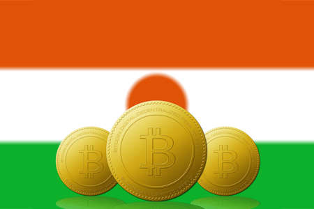 Three Bitcoins cryptocurrency with Niger flag on background.