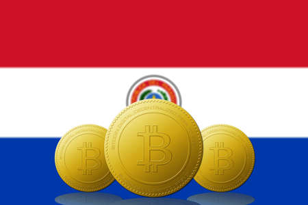 Three Bitcoins cryptocurrency with Paraguay flag on background. 版權商用圖片