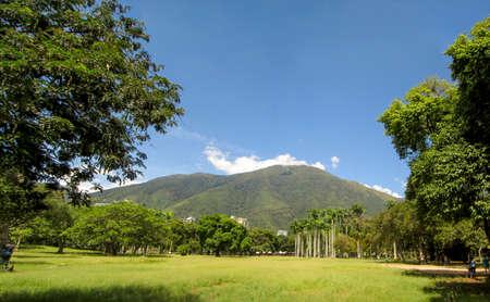 Beautiful view of Avila Mountain from the East Park Warairarepano Caracas Venezuela