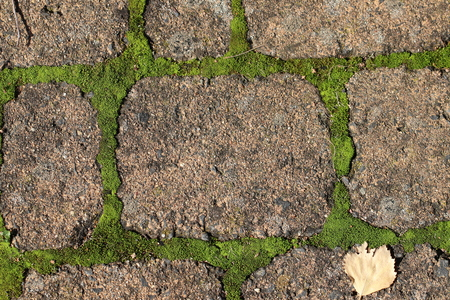 Red paving stones with moss in the joints