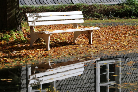 Park bench on the water with reflection - karst spring near Goettingen