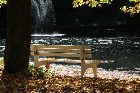 Park bench by the water with fountain - karst spring near Goettingen