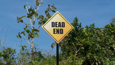 dead end: Dead end sign placed in front of trees