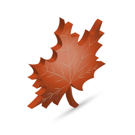 Maple leaf icon in isometric projection with the shadow Çizim