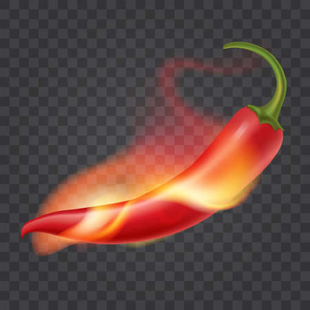 Hot chili pepper on fire. Flame around red pepper. Isolated on transparent background. Realistic illustration. Vector eps 10.