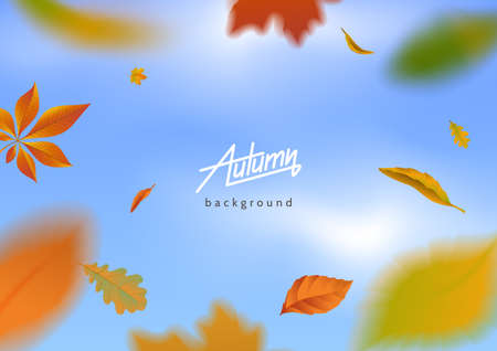 Falling autumn leaves on blue sky background. Motion blur effect. Flying autumnal foliage around the text. Applicable for banner, poster,flyer, advertising. Vector eps 10.