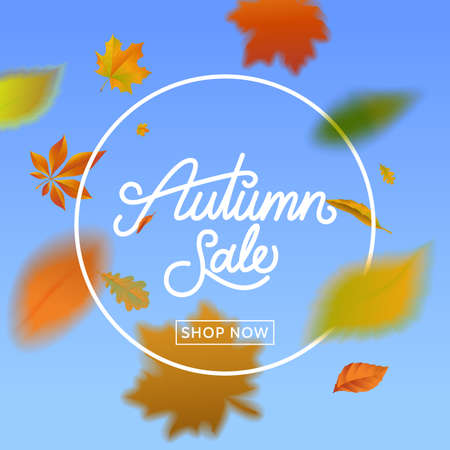 Autumn sale calligraphy on blue sky background with falling leaves . Fall sale banner with foliage. Template for promo, advertising, flyer, poster. Vector eps 10. Illustration
