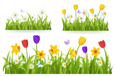 Spring grass border with early spring flowers and butterfly isolated on white background. Illustration of colored tulips, daffodils and daisies. Garden bed. Springtime design element. Vector eps 10. Foto de archivo - 125259507