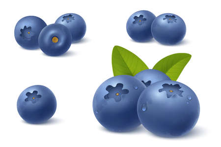 Realistic blueberry in 3d style. Fresh ripe blueberry with green leafs isolated on white background. Bilberry with water drops. Design element for sweets, jam advertising. Vector illustration.