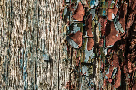very old peeling paint on the old wood close-up