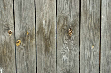 nails: Background of old textured wood with knots Stock Photo