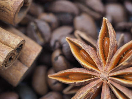 coffee cinnamon and star anise on gray background close up Stockfoto