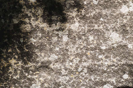 The ancient rusty old stone texture for background and design concepts. the shadow of the foliage on the rock. geology. Horizontal background