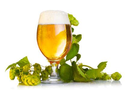 Hopfenzapfen mit Bier isoliert auf weiß
