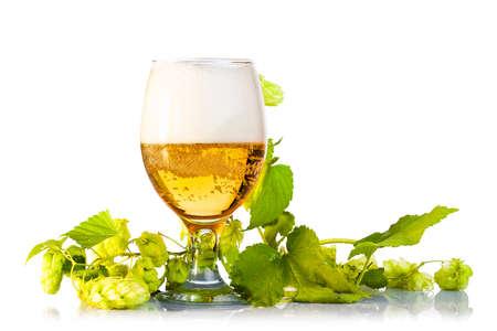 Hopfenzapfen mit Bier isoliert auf wei? Standard-Bild - 21669846