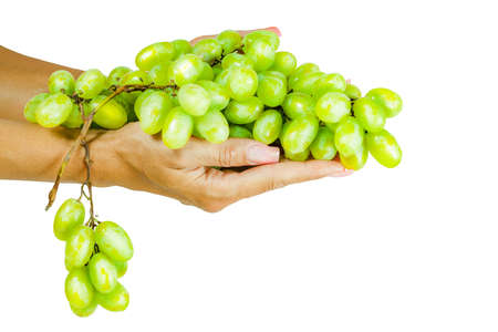 bunch of grapes on woman hand isolated on white   Imagens