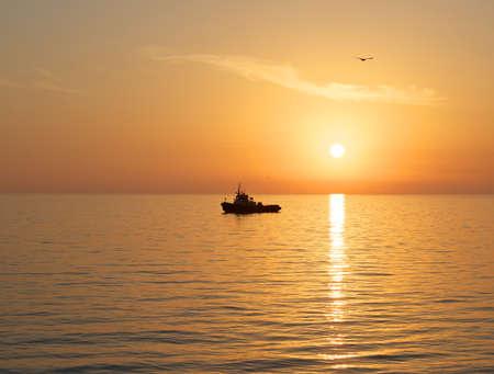 Golden sunset. photo