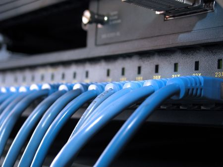 A row of blue UTP network cables that are connected to a switch