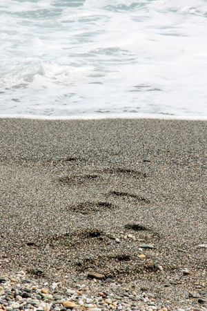 wiped out: Footprints coming from the sea partly wiped out by the waves